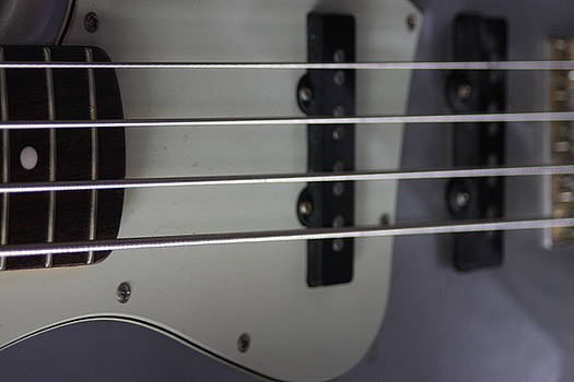 Bass Guitar Strings  by Sheryl Chapman Photography
