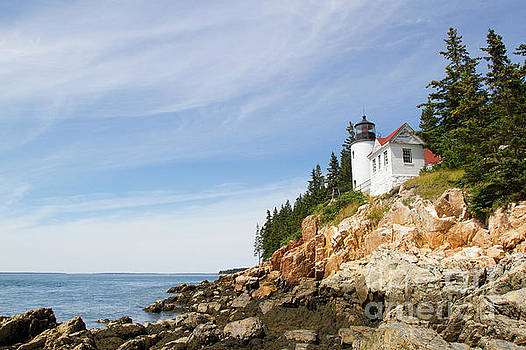 Bass Harbor Head Light by Denise Lilly
