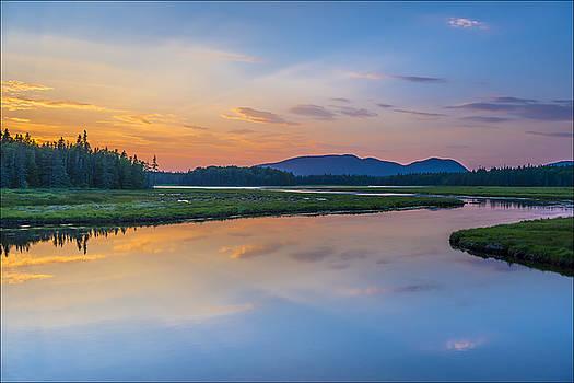 Bass Harbor Marsh by Michael Bufis