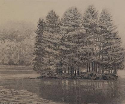 Bass Lake 5 by Regina Calton Burchett