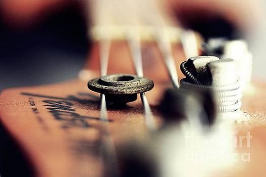 Bass by Patrick Rodio