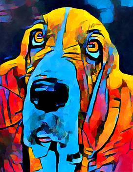 Basset Hound by Chris Butler