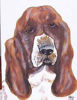 Bassett Hound by Kathy Young