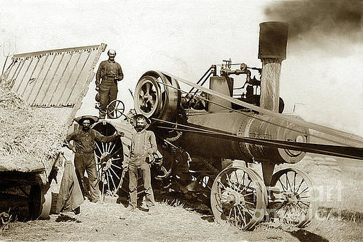 California Views Mr Pat Hathaway Archives - Bassett Lowke traction engines Threshing wheat circa 1920