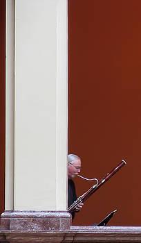 Bassoon by David Ralph Johnson