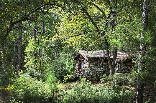 Bastrop Cabin by Brian Kinney