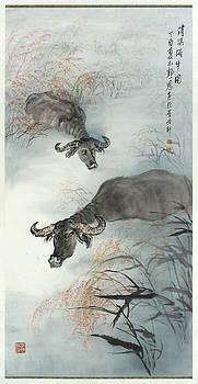 Bathing Cattles by Jennifer Pong