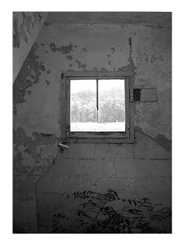 Bathroom Window by Sherry  Kepp