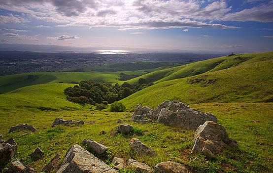 Bay Area Foothills in Spring by Matt Tilghman