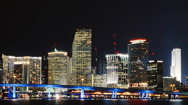 Bay Front Miami Skyline by Gary Dean Mercer Clark