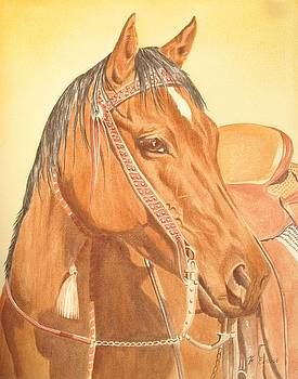 Bay Horse by Frances Evans