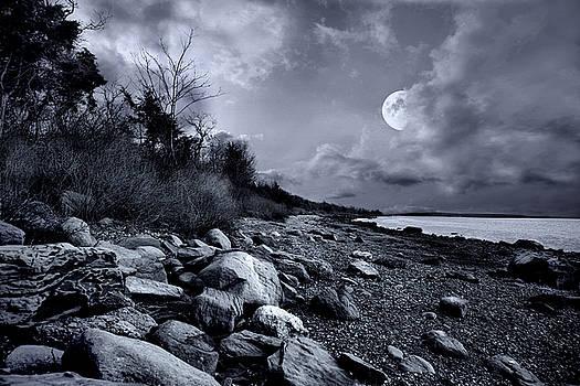 Bay Light by Robin-Lee Vieira