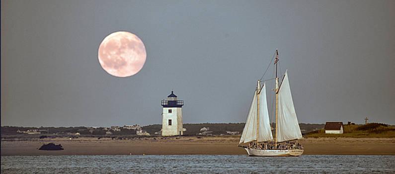 Bay Moon by Jim Austin Jimages