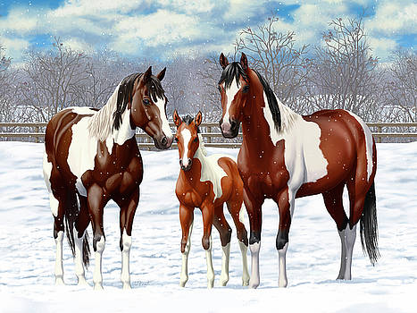 Bay Paint Horses In Winter by Crista Forest