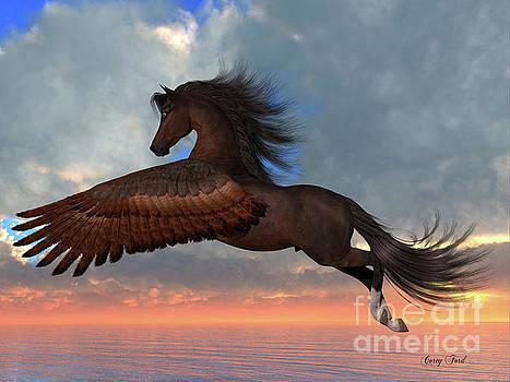 Corey Ford - Bay Pegasus Horse