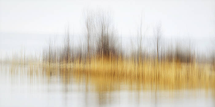 Bay Reflection by Claudio Bacinello