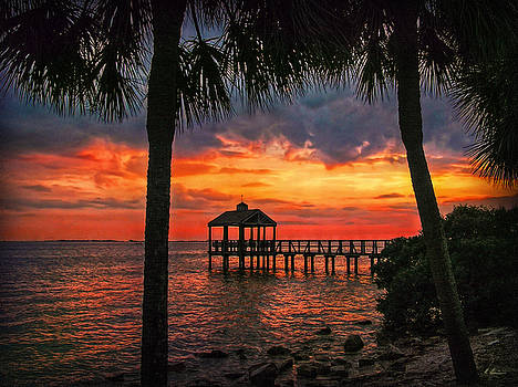 Bay Vista Point by Hanny Heim