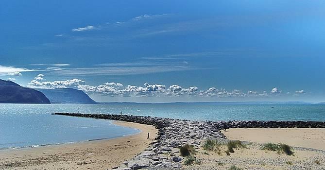 Baylands by Nick Thomas