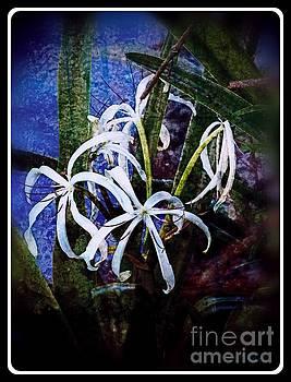 Bayou Flower  by Leslie Revels