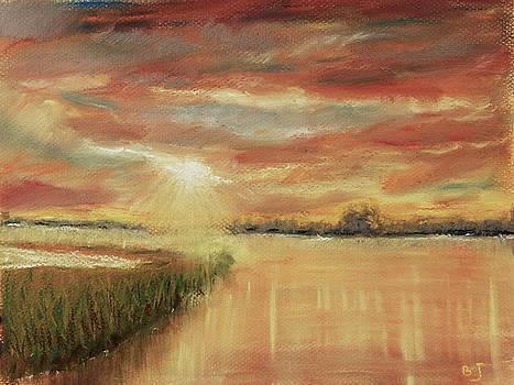 Bayou Sunrise by Barry Jones