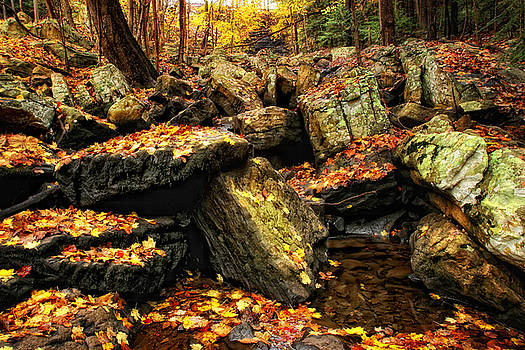 Bays Mountain Rocks by Earl Carter