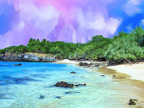 Dominic Piperata - Beach 69 Big Island