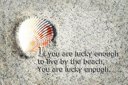 Sharon Cummings - Beach Art - Lucky Enough - Sharon Cummings