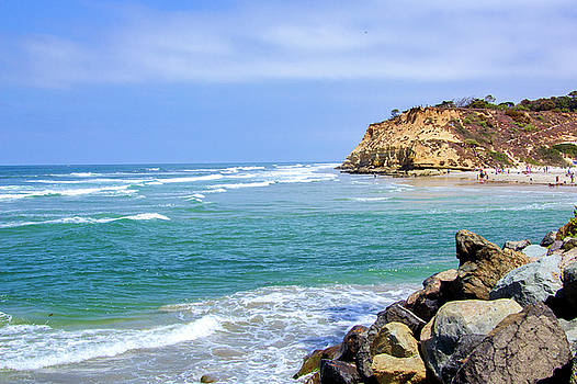 Beach at Del Mar, California by Randy Bayne