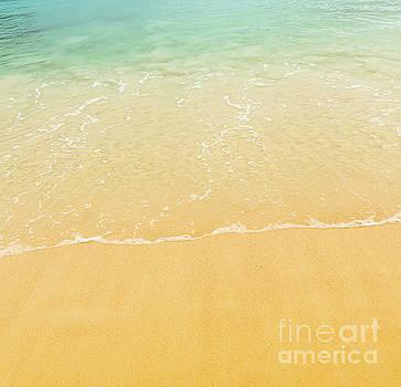 Tim Hester - Beach Background