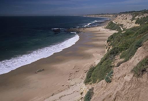 Don Kreuter - Beach Beachcombers and Wildflowers