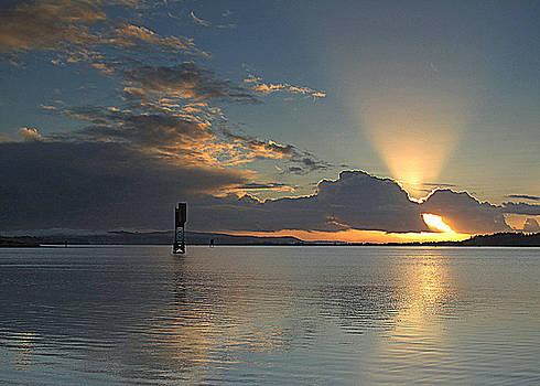 Beach Beacon by Suzy Piatt