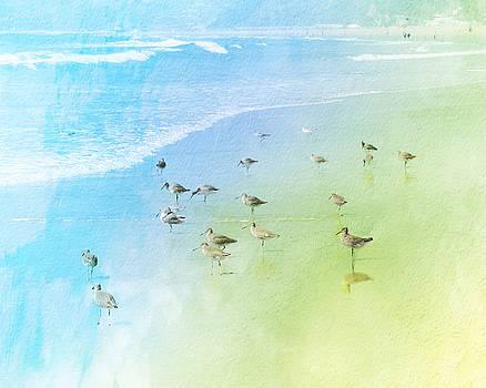 Beach Birds by Ken Reardon