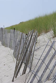 Beach Border by Patricia M Shanahan