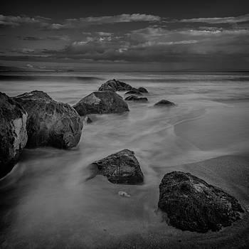 Beach Boulders by David Attenborough