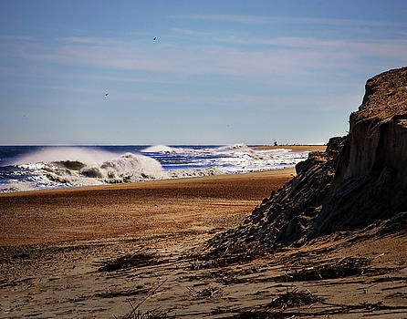 Beach Cliff at Indian River by Bill Swartwout Fine Art Photography