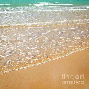 Tim Hester - Beach Coastline Background