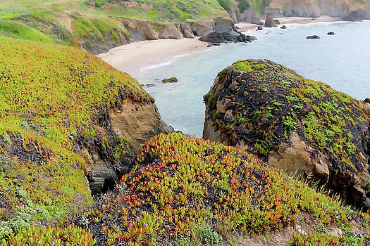 Art Block Collections - Beach Coves at Pigeon Point