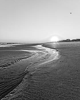 Beach Dawn by Alan Raasch