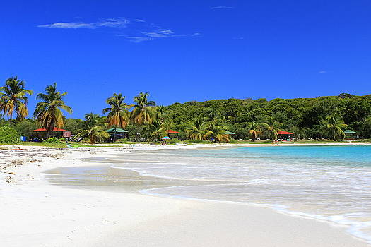 Beach Day In Vieques by Fiona Kennard