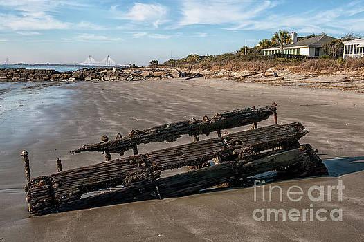 Dale Powell - Beach Debris