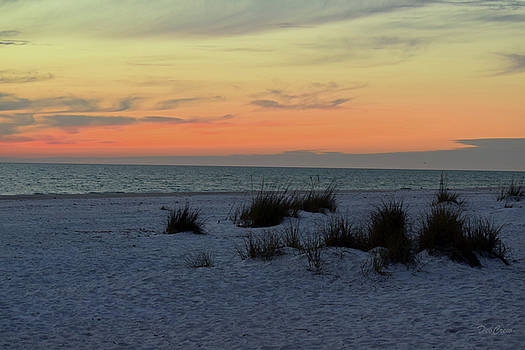 Beach Evening Tones by Deborah  Crew-Johnson
