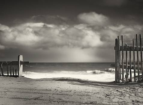 Beach Fence - Wellfleet Cape Cod by Dapixara Art