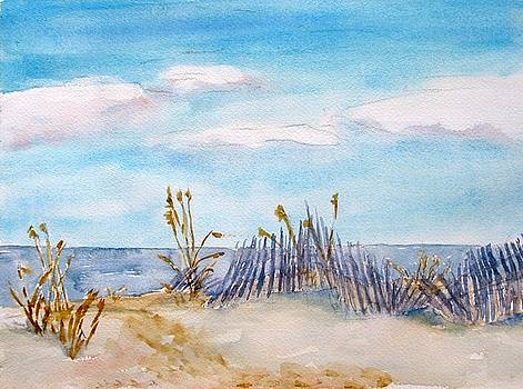 Beach Fence By M Jan Wurst