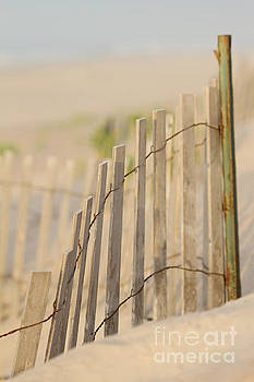 Beach Fences by A New Focus Photography