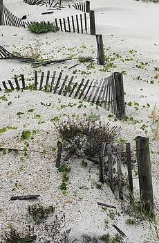 Beach Fences by Kim Zwick