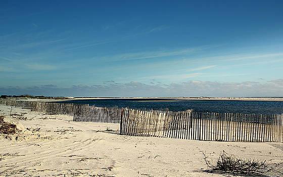 Beach Fences by Rosanne Jordan