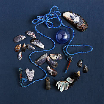 Art Block Collections - Beach Finds in Blue