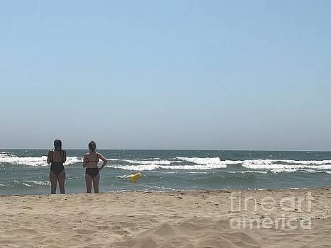 Beach Friends by Nadine Rippelmeyer