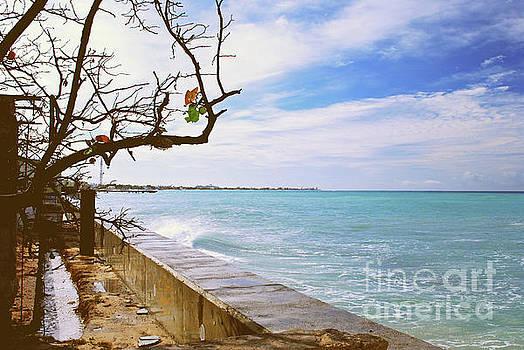 Gary Wonning - Beach Front View