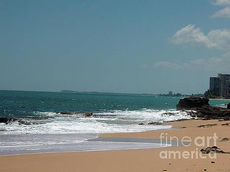 Gary Wonning - Beach